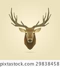 deer portrait realistic 29838458