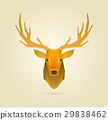 deer portrait 29838462
