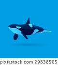 orca 29838505