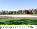 Great lawn located in the heart of Central Park  29839615