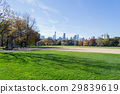 Great lawn located in the heart of Central Park  29839619