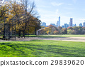 Great lawn located in the heart of Central Park  29839620