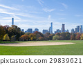 Great lawn located in the heart of Central Park  29839621