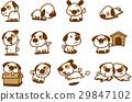 可爱的白狗_变化 29847102