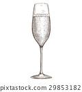 champagne glass hand 29853182