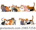 illustration, pet, pets 29857256