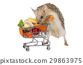 African hedgehog with a basket full of products 29863975