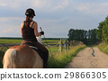 A young woman riding a horse Haflinger 29866305