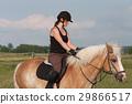 馬兒 動物 馬 29866517