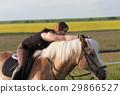 馬兒 動物 馬 29866527