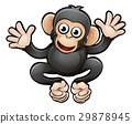 animal, chimp, cartoon 29878945
