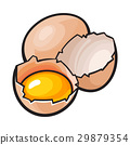 Whole and cracked, broken chicken egg with yolk 29879354