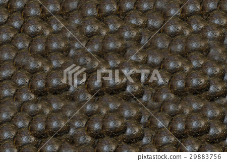 many cores for ancient cannon texture rusty 29883756