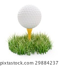 golf ball on tee and green grass isolated on white 29884237