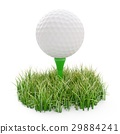 golf ball on tee and green grass isolated on white 29884241