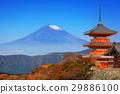 Mt. Fuji with red pagoda in autumn season, Japan 29886100