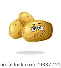 Funny potato character cartoon mascot vector 29887244