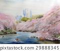 치도리가 후치 공원 도쿄 명소 벚꽃 스케치 29888345