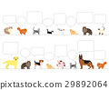 animal, animals, dog 29892064