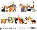 animal animals dog 29892066