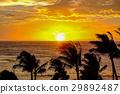 Sunset of Hawaii 29892487