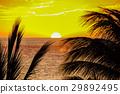 Sunset on Hawaii island 29892495