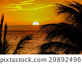 Sunset on Hawaii island 29892496