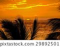 Sunset on Hawaii island 29892501