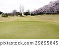 golf, 골프장, 잔디 29895645