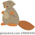 cartoon beaver animal character 29899499