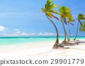 沙子 熱帶海洋 假期 29901779