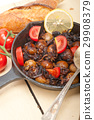 cuttle, fish, iron 29908379