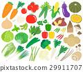Illustration set of vegetables 29911707