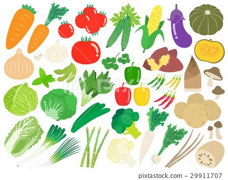 蔬菜 矢量 小黃瓜 29911707