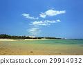 冲绳 边野古 沙滩 29914932
