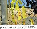 冲绳名护市Henoko的边境围栏营地施瓦布[2017年4月拍摄] 29914959