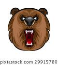 Russian angry bear 29915780