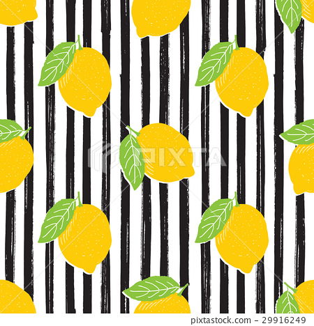 Lemon sketch striped Seamless Pattern. Vector 29916249