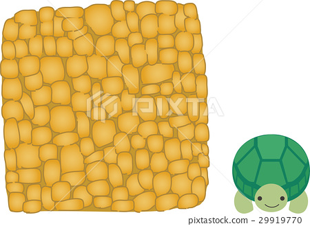 Birthday cake and tortoise 29919770