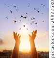 Hands praying with flying birds on sunset nature 29922680