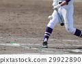 棒球 29922890