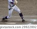 棒球 29922892