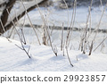 texture of natural snow and twigs 29923857