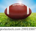 football on field 29933987
