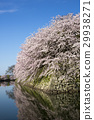 hikone castle, stone wall, nakahori 29938271