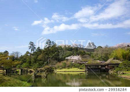 从佛陀天堂看见的春天彦根城堡 29938284