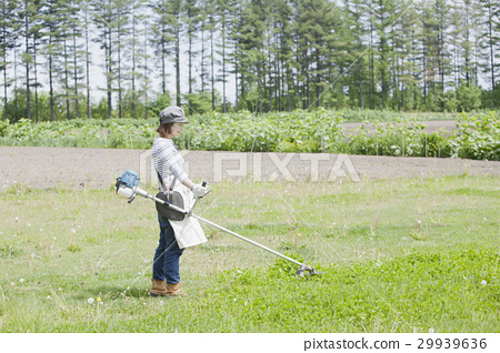 A woman working with mowing work 29939636