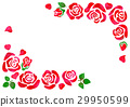 rose, red, flower 29950599
