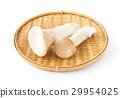 새송이 버섯 재료 야채 29954025