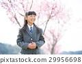 ซากุระกับเด็กผู้หญิงในชุด 29956698